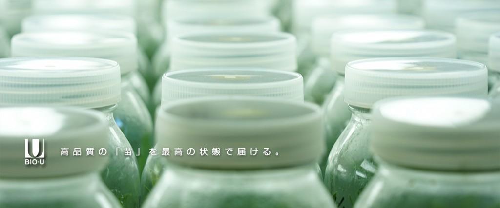 _top---コピー_02